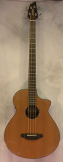 Breedlove Solo Acoustic Bass