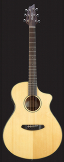 Breedlove Discovery Concert CE