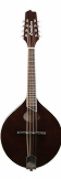 Breedlove Crossover OO VS Mandolin w/ gigbag