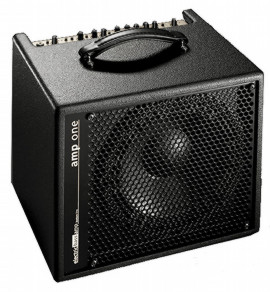 AER Amp One 200W Combo Amp